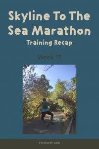 skyline marathon training 17