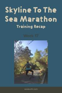 skyline marathon training 17