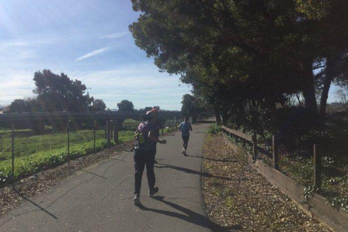 Oakland Marathon Training week 10