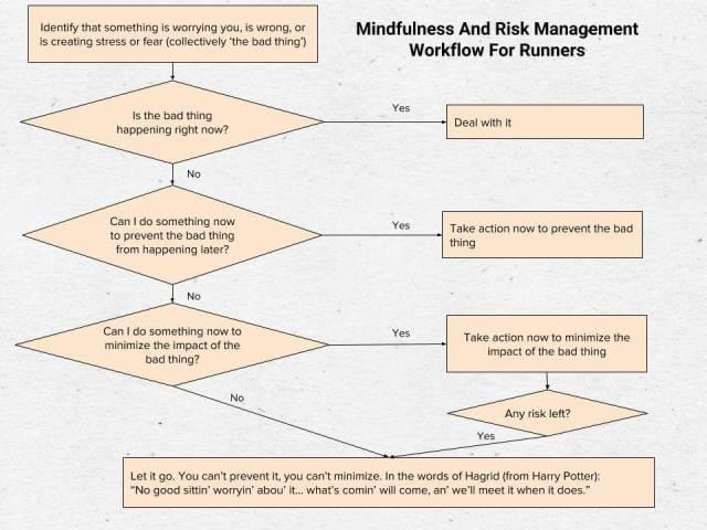 Mindful Risk flowchart