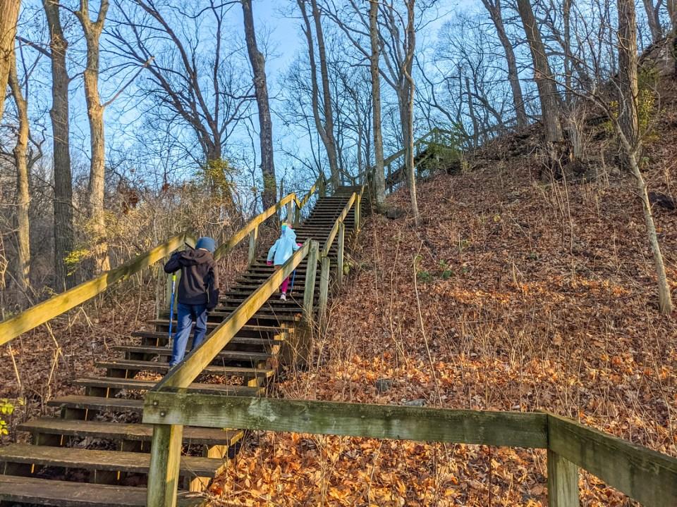 Stairs Fults Hill Prairie