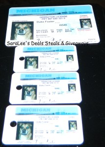 MyPetDMV Dog & Cat license (3/3)