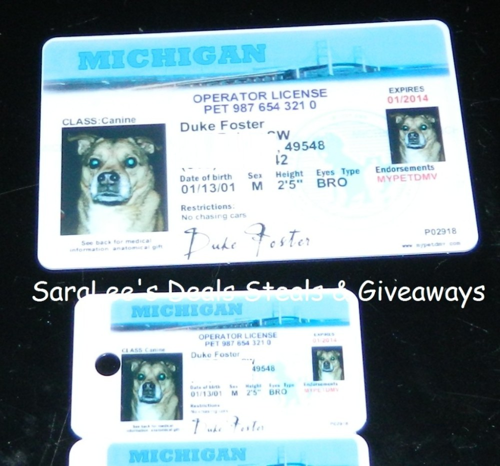 MyPetDMV Dog & Cat license (1/3)