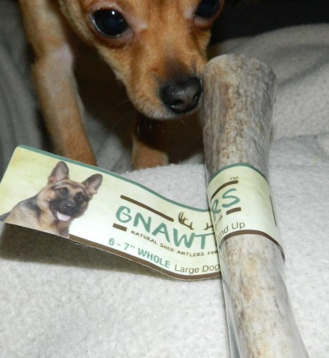 Pet Chews