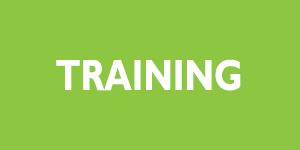 300x150_Training