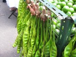 Per friends: Fruit of Nitta tree, or called petai in Indonesia, apparently has a strange odor.