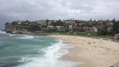 World famous Bondi Beach.