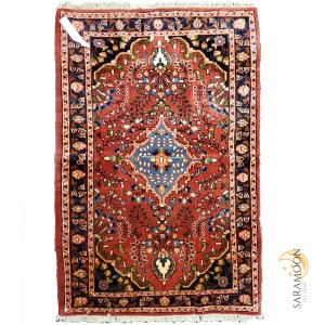 Hand-Knotted Hamedan Small Rug