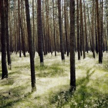 © Wim Wenders Forest in Brandenburg, 2014 Image courtesy the artist and BlainSouthern