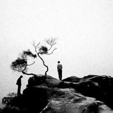 ©-Jing-Huang_Pure-of-sight-20111-630x420