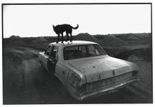 © Wim Wenders Dusk in Coober Pedy, 1978 Image courtesy the artist and BlainSouthern