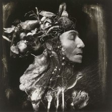the_harvest_by_witkin