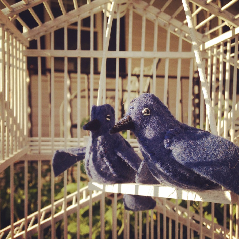 Erin & Jacob's Wedding Bluebirds