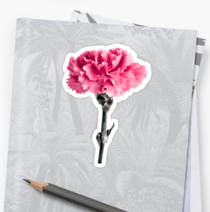 Pink Carnation flower stickers
