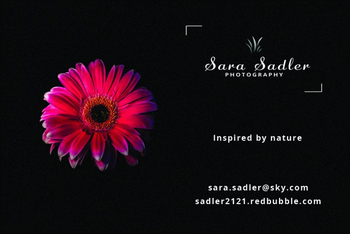 New business card for Sara Sadler Photography.