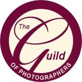 Guild member logo