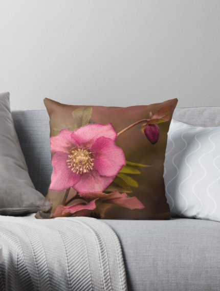 Christmas Rose Cushions