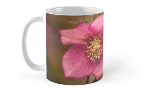 Christmas Rose Mugs