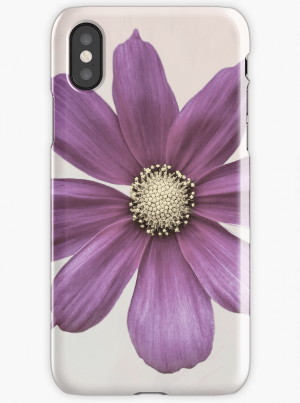 cosmos flower iPhone cases