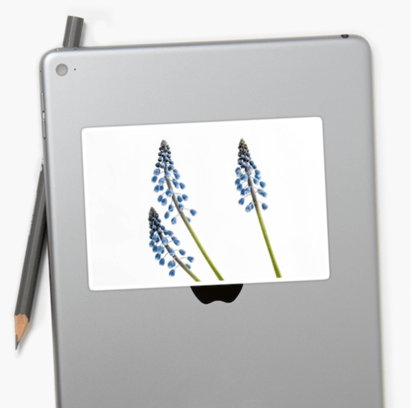 grape hyacinth flower stickers - medium