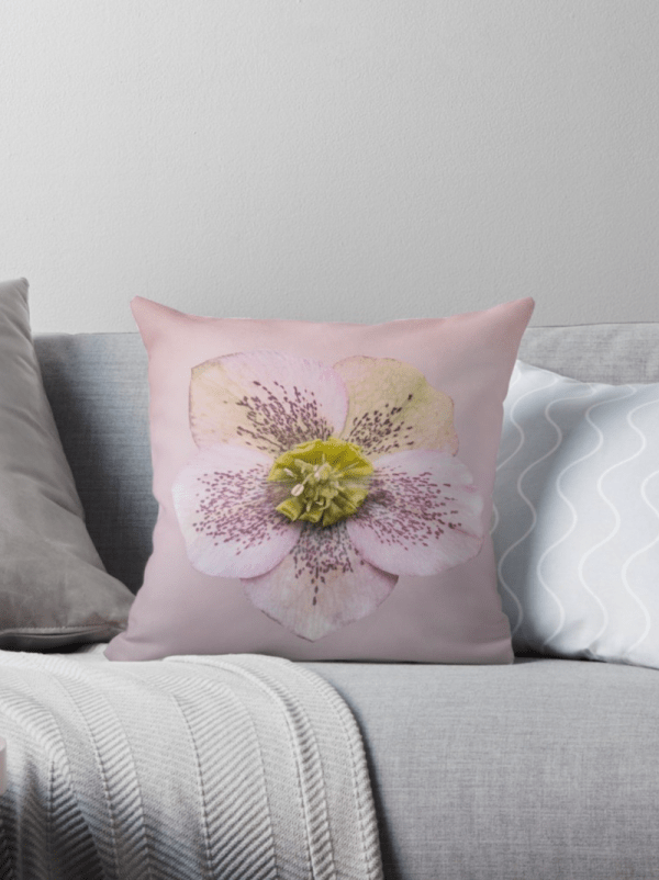Hellebores flower Cushions - small
