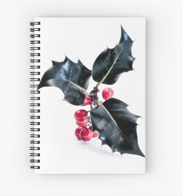 holly notebook