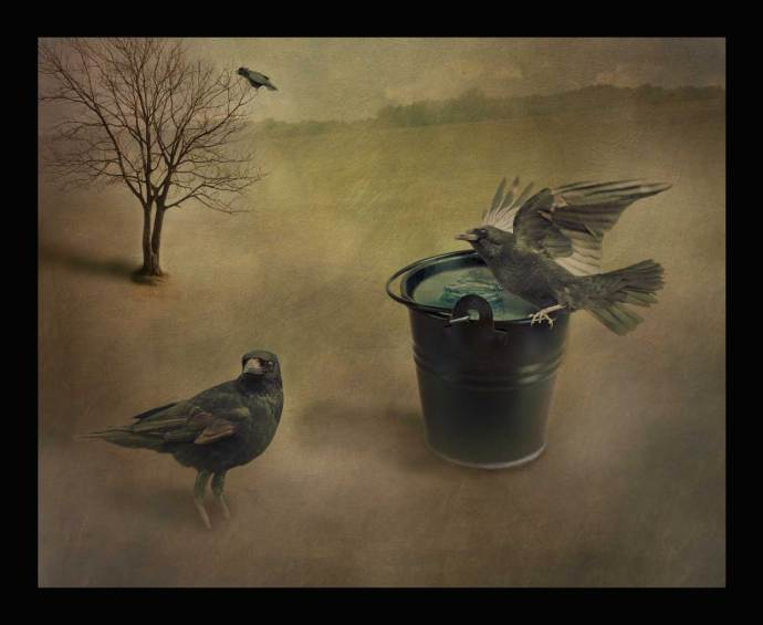 three crows - new digital art image