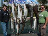 sarasota-charter-fishing-pictures-10