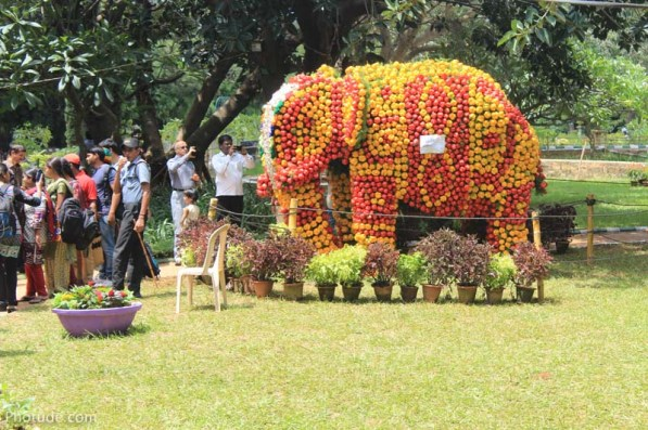 Elephant made out of capsicum