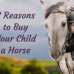 7 Tasty Horse Treat Recipes That Will Pamper Your Horse Saratoga Stalls European Horse Stalls Custom Horse Stalls