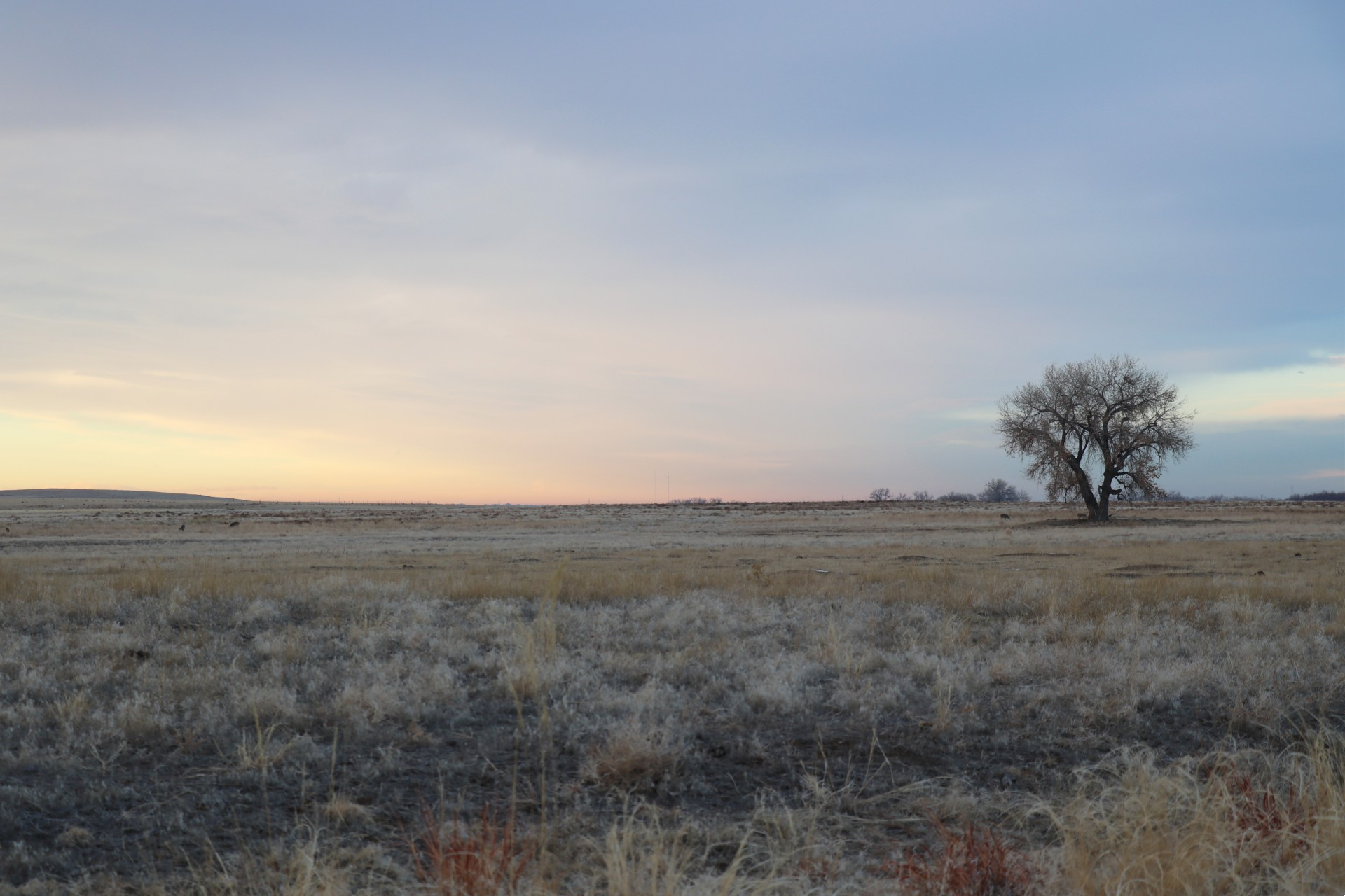 Sunset Photographed By Sara Turbyfill In Adams County, Colorado.