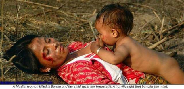 rohingya-berdarah07