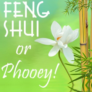 Episode 14: Wild Card Week – Feng Shui, or Phooey!