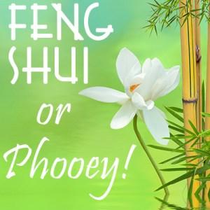 Feng Shui, or Phooey!