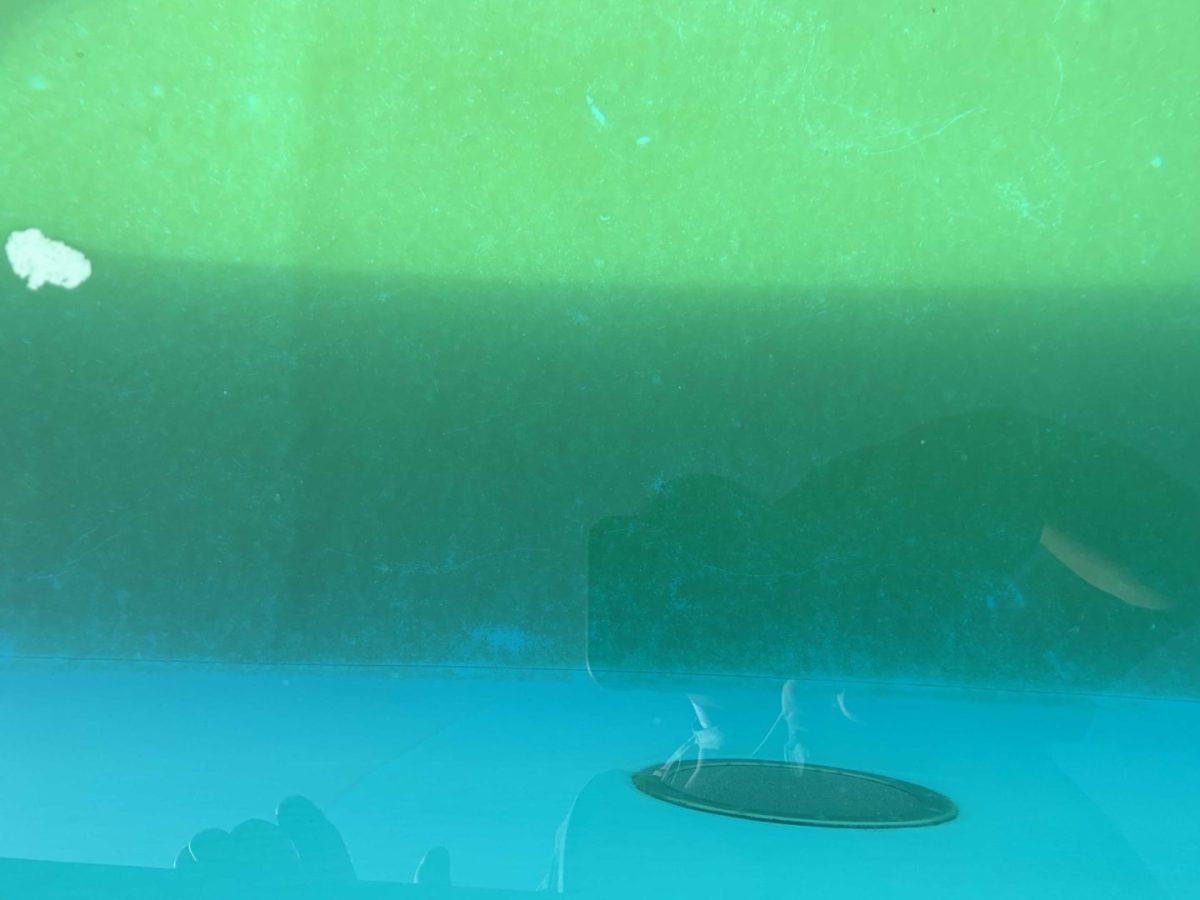 Осадок зелени в бассейне