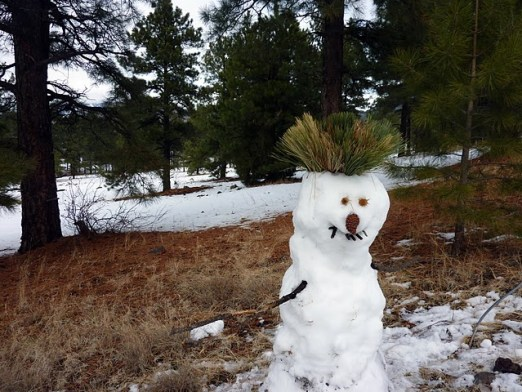 Snowman with pine needle spiked hair