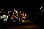 Medjugorje, Capodanno 2015: Chiesa di San Giacomo (13) – Foto di Sardegna Terra di pace – Tutti i diritti riservati
