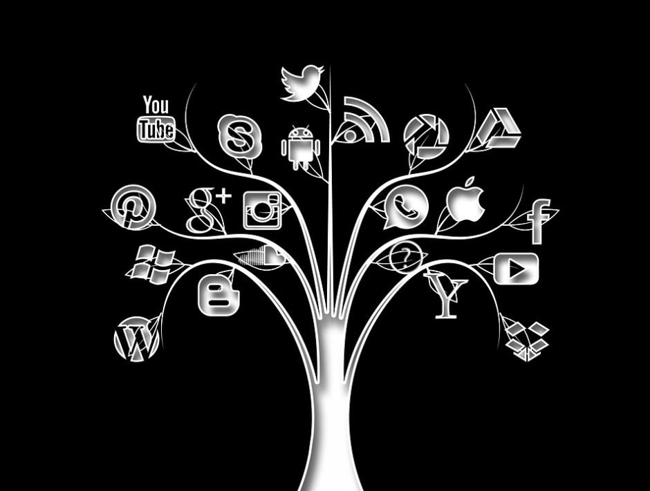 Internet e social media