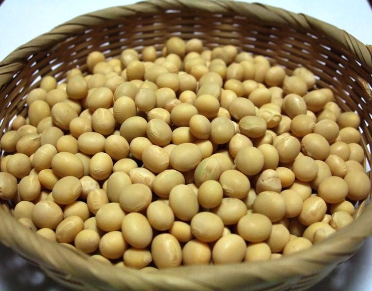 大豆ポリフェノールの特徴と効果効能!美白効果もあるの?