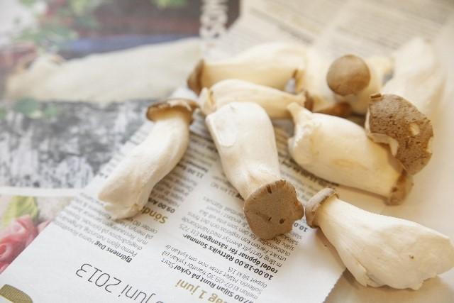エリンギの栄養と効能・効果やおすすめのレシピ!賞味期限は?