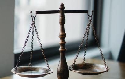 Law Making