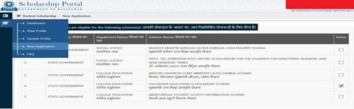 Mukhyamantri Sambal Yojna B.Ed Rajasthan Widows
