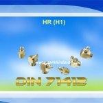 Gresorluk-HR- (H1)- Brass DIN- 71412-3