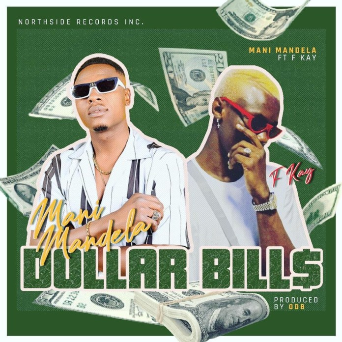Download MP3: Mani Mandela -Dollar Bills Ft. Fkay (Prod. By ODB)