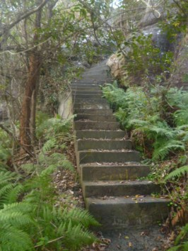 (pic - Story) Gosford Glyphs - Ascent 01