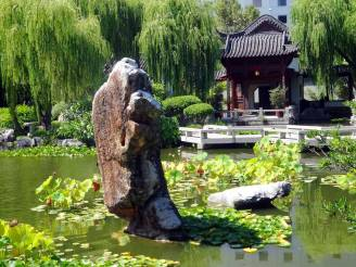 WEEPING WILLOWS, POPULAR IN CHINA