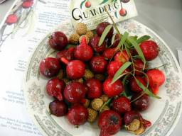 Note the quandong seeds
