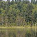 神秘の沼 カムイト沼