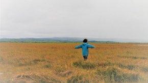 【案内】10/6・7・8 サロベツ湿原バックヤードツアー開催!