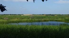 砂丘林の沼のそばでの砂採取